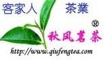 福建安溪秋风茗茶